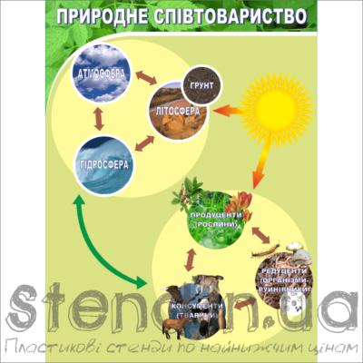 Стенд Природне співтовариство (270301.1)