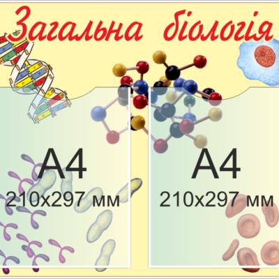 Стенд Загальна біологія (270301.6)
