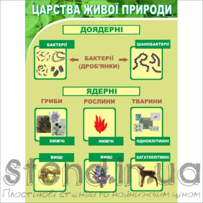 Стенд Царства живої природи (270301)