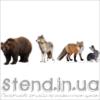 Набір Дикі тварини (22308)