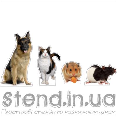 Набір Домашні тварини (22309)