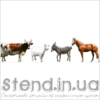Набір Домашні тварини (22310)