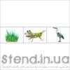 """Набір з 3-х зображень для розміщення на стенді """"Екологічні ланцюги (22315)"""" (22316.2)"""