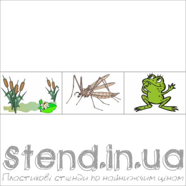"""Набір з 3-х зображень для розміщення на стенді """"Екологічні ланцюги (22315)"""" (22316.3)"""