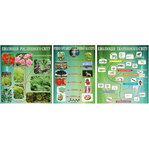 Стенд Еволюція рослинного та тваринного світу (270301.16)