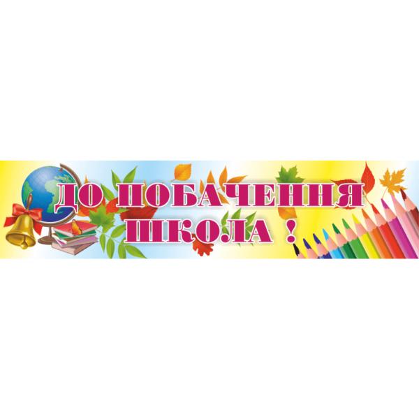 Банер До побачення школа! (271102.1)