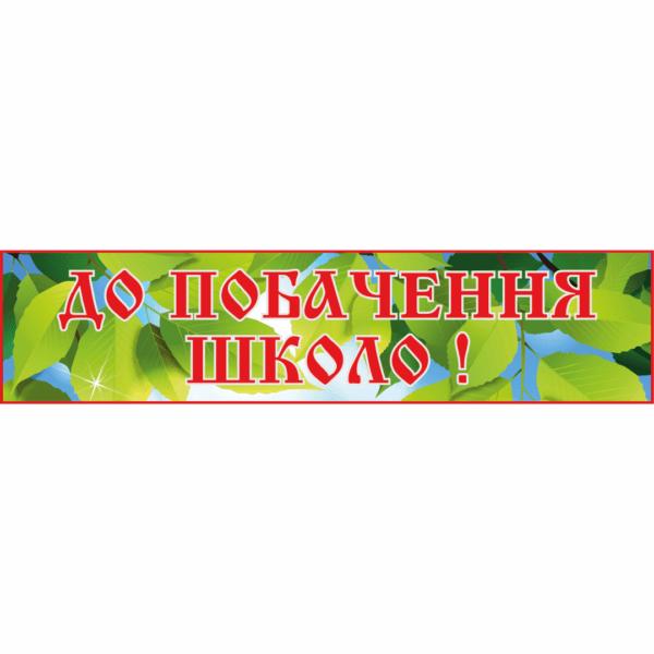 Банер До побачення школо! (271102.4)