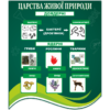 Стенд Царства живої природи (270301.24)